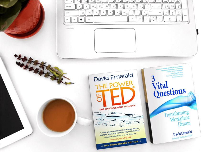 book covers of 3VQ and The Power of TED*