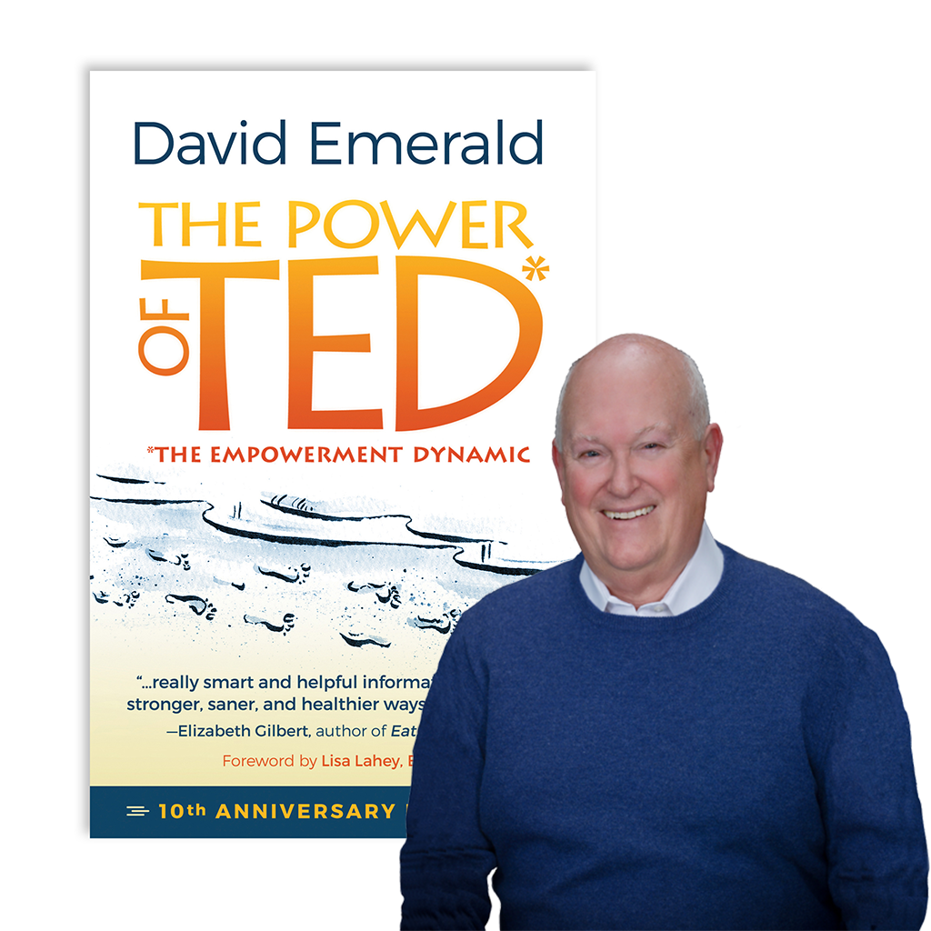 David Emerald and The Power of TED* book cover